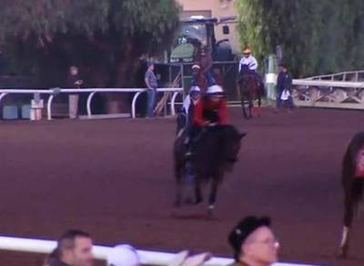 News video: Prime Spot for Shared Belief in Breeders' Cup Classic
